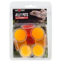 Krmivo REPTI PLANET Jelly Pots Fruit