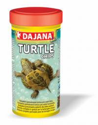 DAJANA Turtle chips 1l